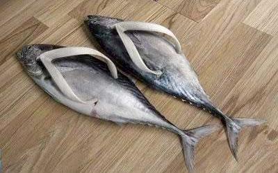 makrell tøfler